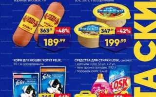 Акции в супермаркетах Лента сегодня: каталог с 18 по 31 марта 2021 года